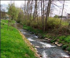Wasserbau_Gewaesser
